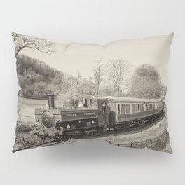 Dart Valley Steam  Pillow Sham