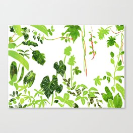 Rainforest Foliage Canvas Print
