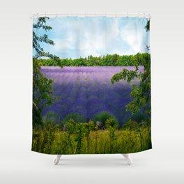 Summertime Lavender Shower Curtain