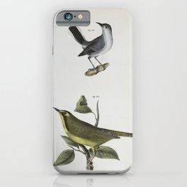 1322 126 The Blue gray Gnatcatcher (Culicivora cerulea) 127 The Kentucky Warbler (Sylvicola formosa)26 iPhone Case