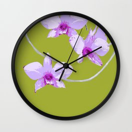 Cooktown Orchid (Dendrobium Phalaenopsis)  on forest green Wall Clock