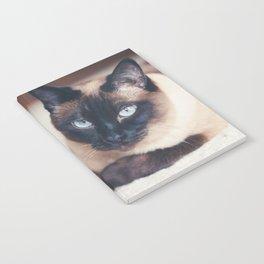 Siamese Cat Notebook