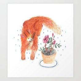 The red cat Art Print