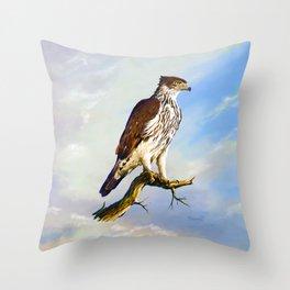 African hawk Eagle Throw Pillow