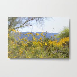 Desert Love Metal Print