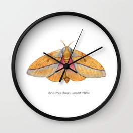 Bisected Honey Locust Moth (Sphingicampa bisecta) Wall Clock
