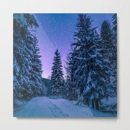 Winter-Snow-Trees Metal Print