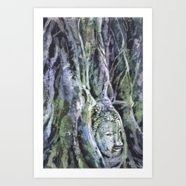 Buddha head overgrown by sycamore roots at UNESCO Art Print