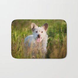 Single white stray tyke dog at the meadow Bath Mat