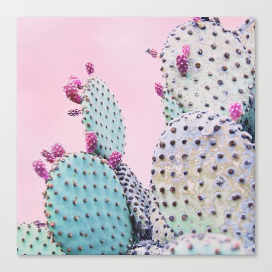Pink Crush Cactus I Canvas Print
