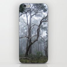 Kyeema Mist iPhone & iPod Skin