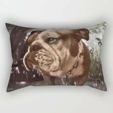 Gus Rectangular Pillow
