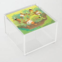 Babies in Bushes Acrylic Box