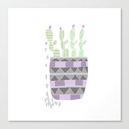 Potted Patterned Cacti Canvas Print