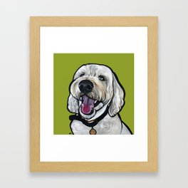 Kermit the labradoodle Framed Art Print