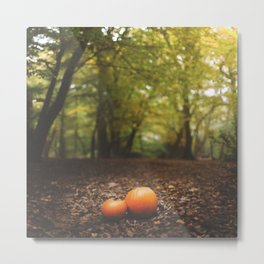 Family Pumpkin Metal Print