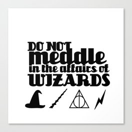 Do Not Meddle in the Affairs of Wizards Canvas Print