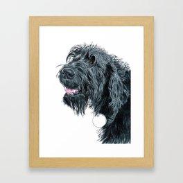 Smiling Black Labradoodle Framed Art Print