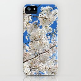 Pink Cherry Blossoms in Full Bloom in Sky Nature Photography iPhone Case
