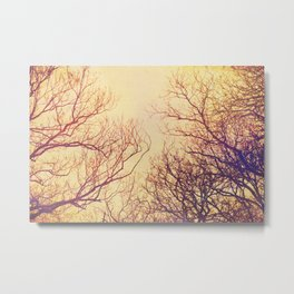High up in the trees Metal Print