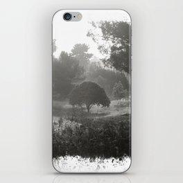 Foggy Path iPhone Skin