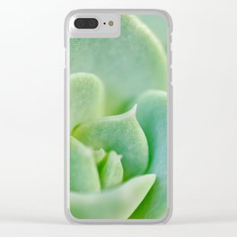 Sempervivum close-up shot Clear iPhone Case