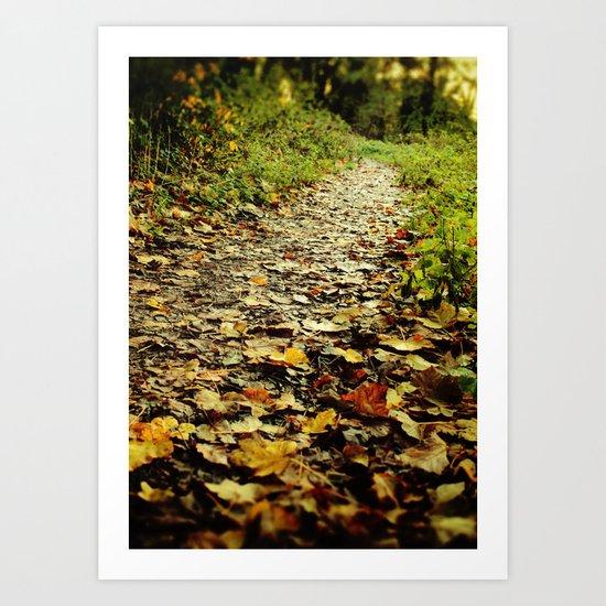 Feet Firmly on the Path Art Print