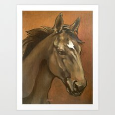 Sound Reason - Thoroughbred Stallion Art Print