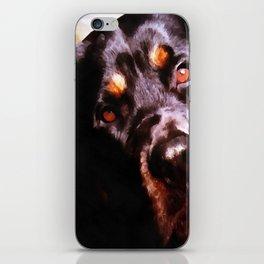 Rottweiler Dog Artistic Pet Portait iPhone Skin