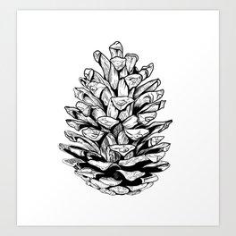 Pine cone illustration Art Print