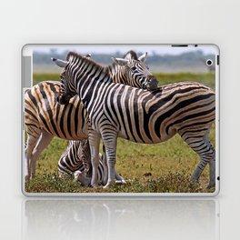 Zebras in Africa Laptop & iPad Skin
