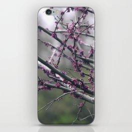 Vivid Purple iPhone Skin