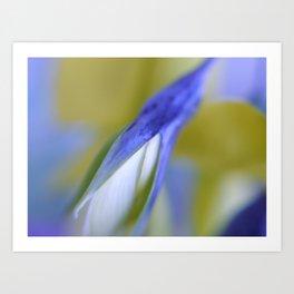 Birdflower Abstract Art Print