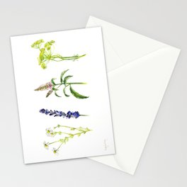 Tea Flowers Stationery Cards
