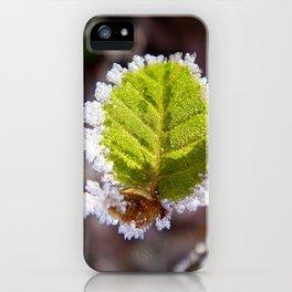 Frosty, light green leaf iPhone Case