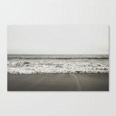 muir beach Canvas Print