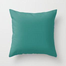 Celadon Green - solid color Throw Pillow
