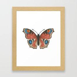 Peacock Butterfly Illustration Framed Art Print