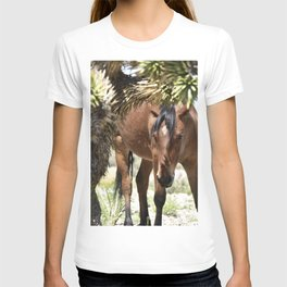 Hello There Mare T-shirt