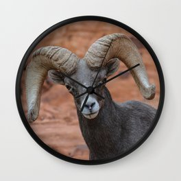 Desert Bighorn, Valley of Fire - IV Wall Clock