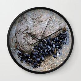 Mussel rock Wall Clock