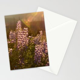 sunset lupin Stationery Cards