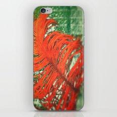 Sensation 1 iPhone & iPod Skin