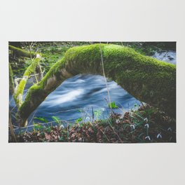 Enchanted magical forest Rug