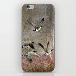Flying Geese iPhone Skin
