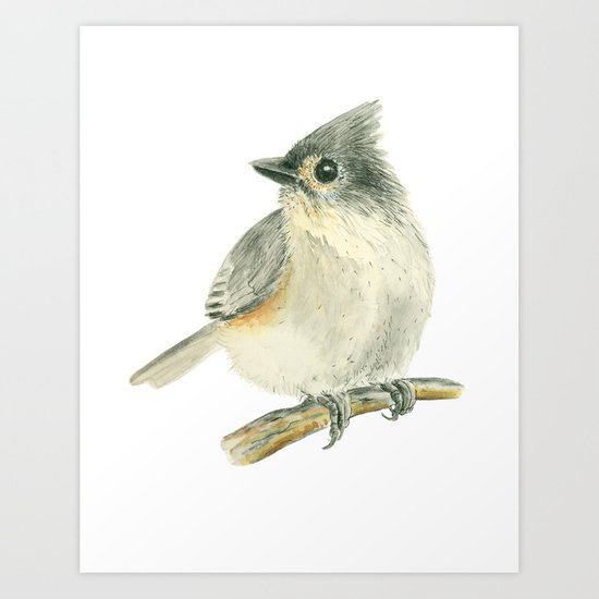 Tit bird, watercolor painting Art Print