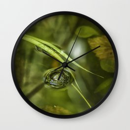 A Bubble on the Surface of a Pond Wall Clock