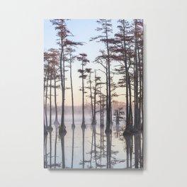 Adams Mill Pond 47 Metal Print