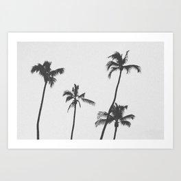 PALM TREES XIX / Hawaii Art Print
