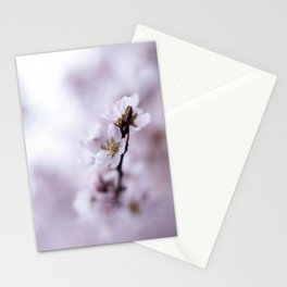 blossoms Stationery Cards